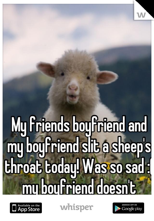 My friends boyfriend and my boyfriend slit a sheep's throat today! Was so sad :( my boyfriend doesn't respect me!