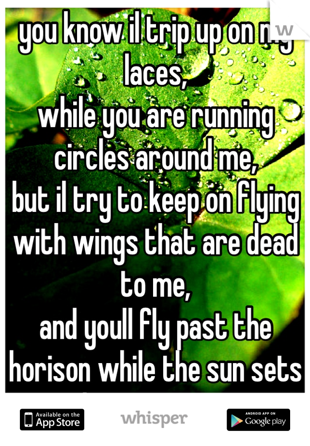 you know il trip up on my laces, while you are running circles around me, but il try to keep on flying with wings that are dead to me, and youll fly past the horison while the sun sets down upon me.