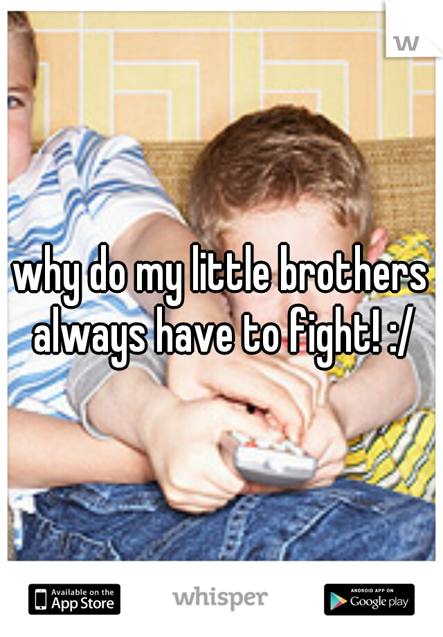 why do my little brothers always have to fight! :/