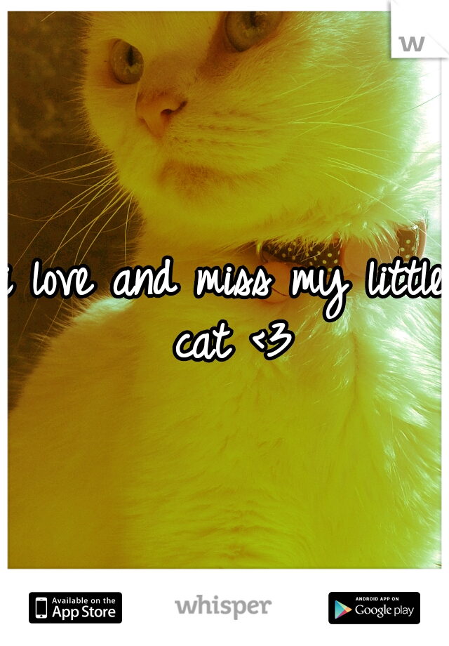 i love and miss my little cat <3