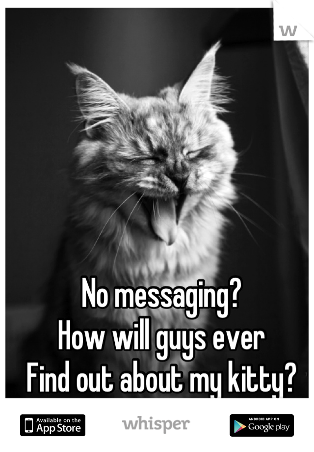 No messaging? How will guys ever Find out about my kitty?