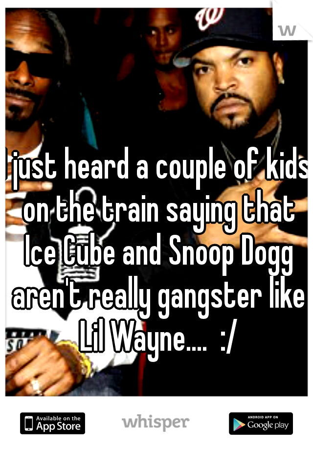 I just heard a couple of kids on the train saying that Ice Cube and Snoop Dogg aren't really gangster like Lil Wayne....  :/