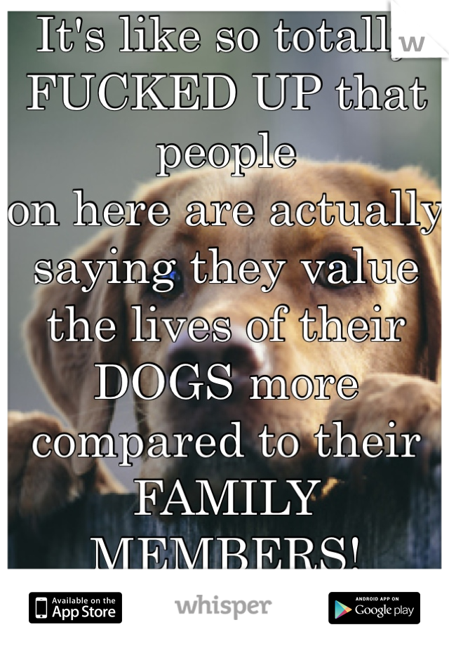 It's like so totally FUCKED UP that people on here are actually saying they value the lives of their DOGS more compared to their FAMILY MEMBERS!  WOW!