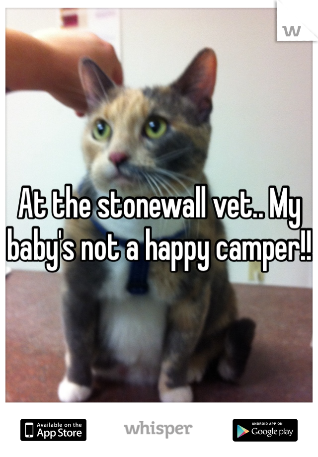 At the stonewall vet.. My baby's not a happy camper!!