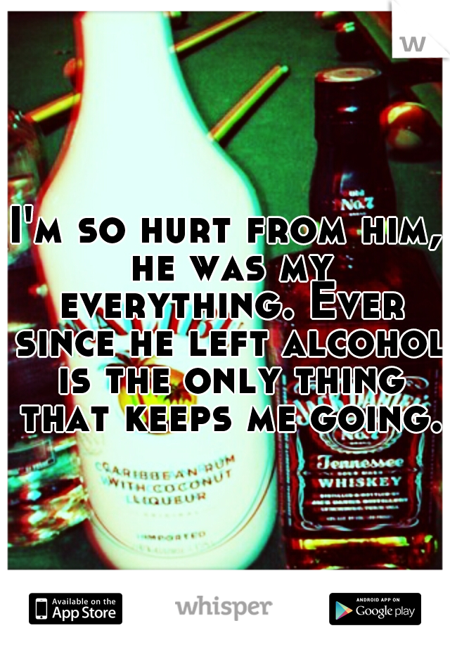 I'm so hurt from him, he was my everything. Ever since he left alcohol is the only thing that keeps me going.