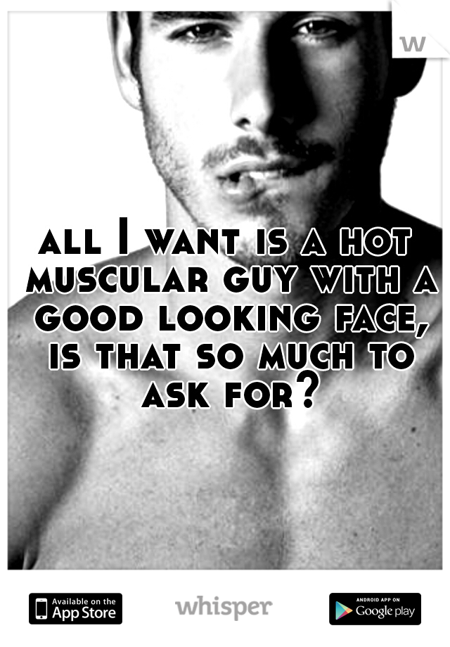 all I want is a hot muscular guy with a good looking face, is that so much to ask for?