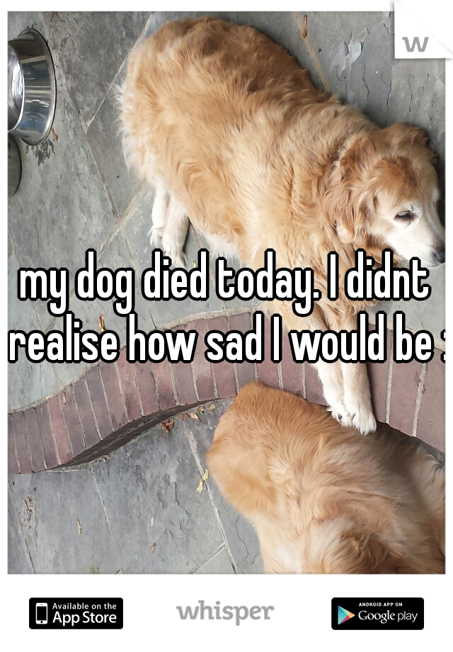 my dog died today. I didnt realise how sad I would be :(