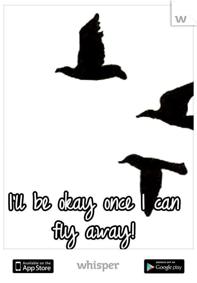 I'll be okay once I can fly away!