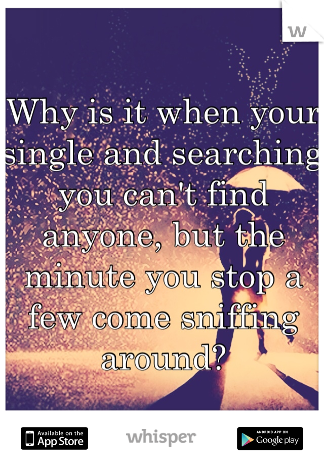 Why is it when your single and searching you can't find anyone, but the minute you stop a few come sniffing around?