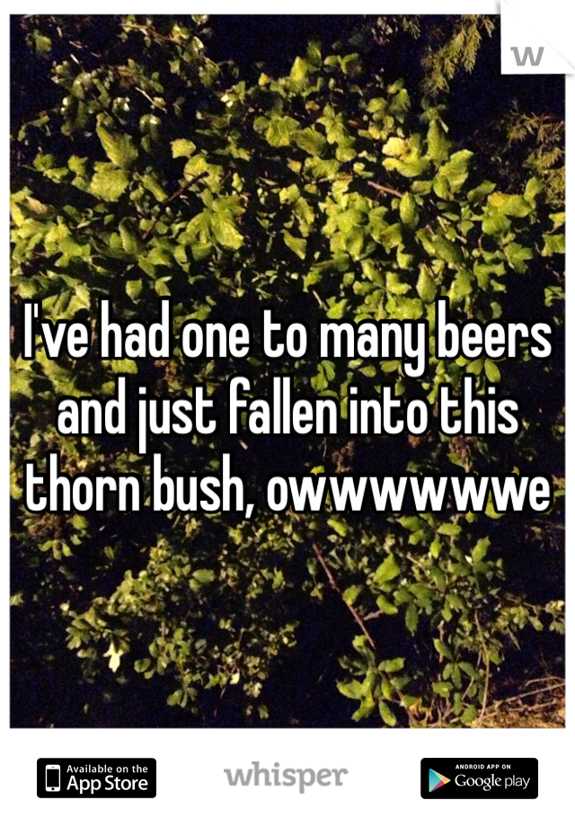I've had one to many beers and just fallen into this thorn bush, owwwwwwe
