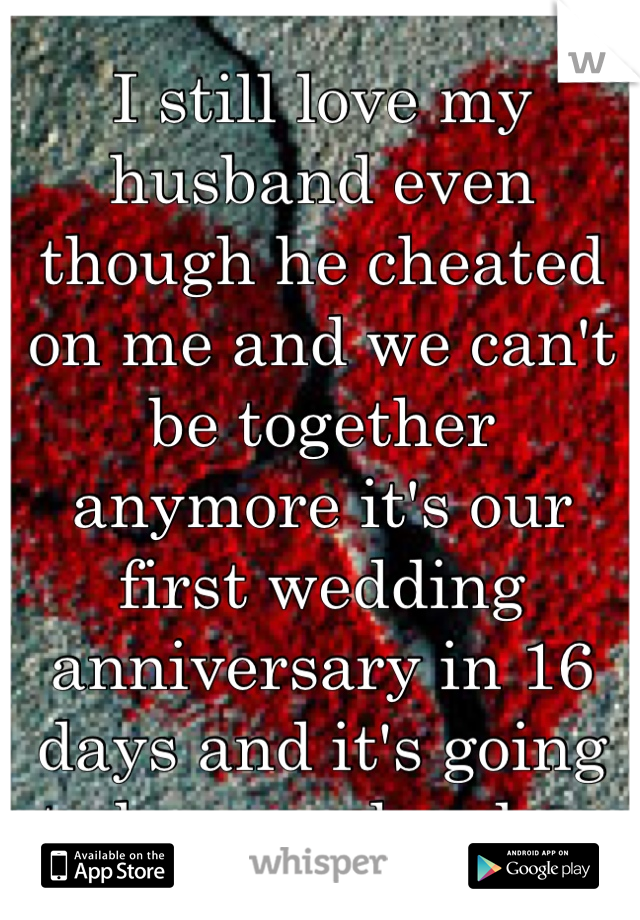 I still love my husband even though he cheated on me and we can't be together anymore it's our first wedding anniversary in 16 days and it's going to be so so hard ....