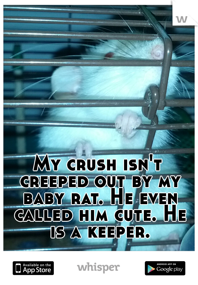 My crush isn't creeped out by my baby rat. He even called him cute. He is a keeper.