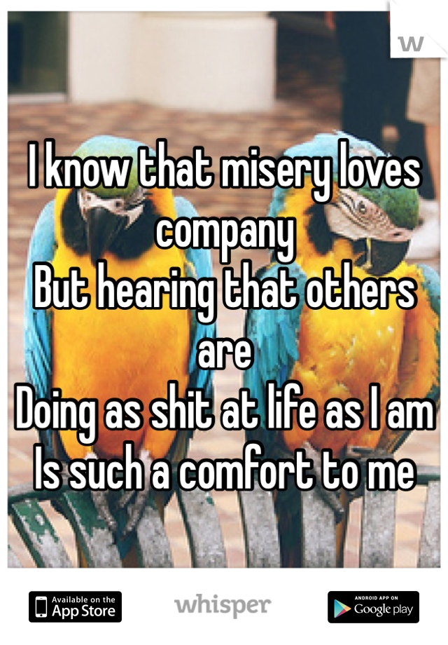 I know that misery loves company But hearing that others are Doing as shit at life as I am Is such a comfort to me
