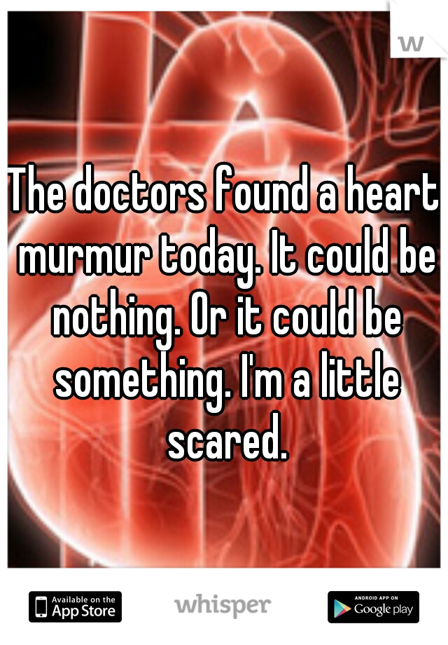 The doctors found a heart murmur today. It could be nothing. Or it could be something. I'm a little scared.
