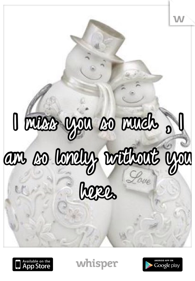 I miss you so much , I am so lonely without you here.