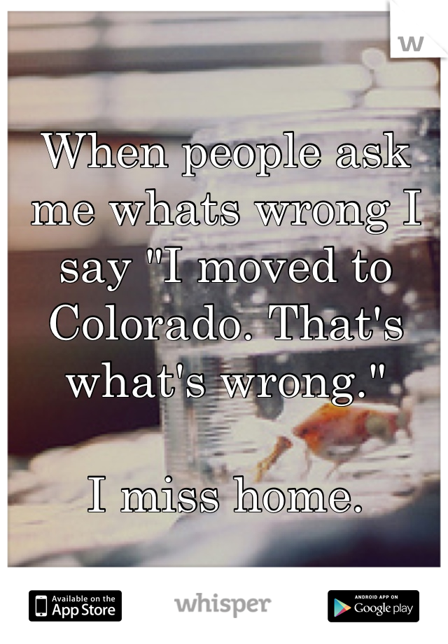 """When people ask me whats wrong I say """"I moved to Colorado. That's what's wrong.""""  I miss home."""