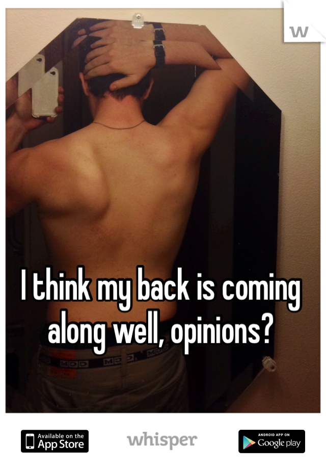 I think my back is coming along well, opinions?