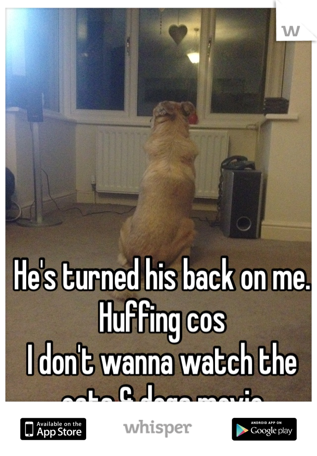 He's turned his back on me. Huffing cos I don't wanna watch the cats & dogs movie