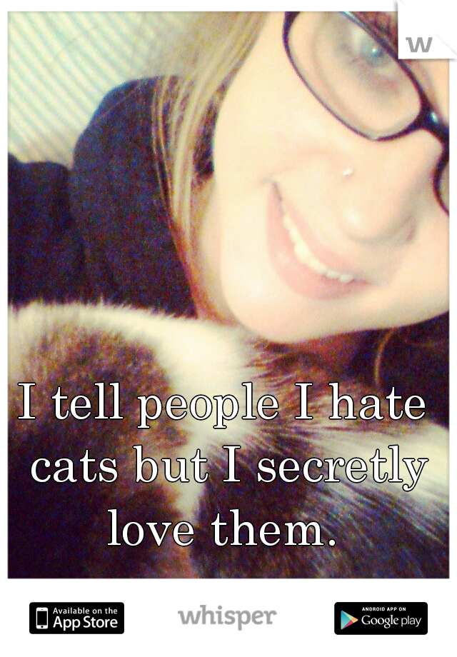 I tell people I hate cats but I secretly love them.