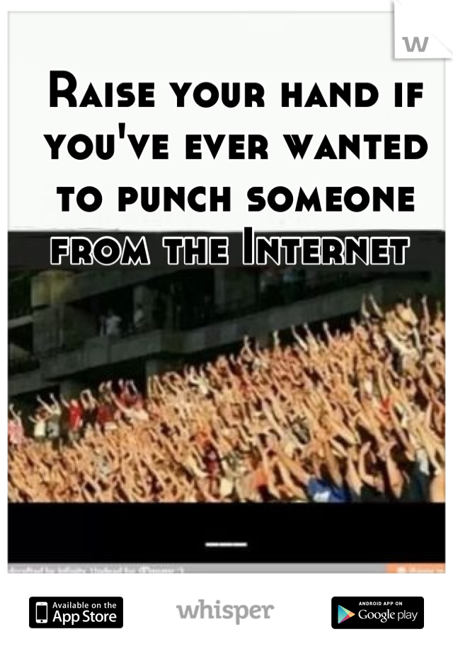 Raise your hand if you've ever wanted to punch someone from the Internet