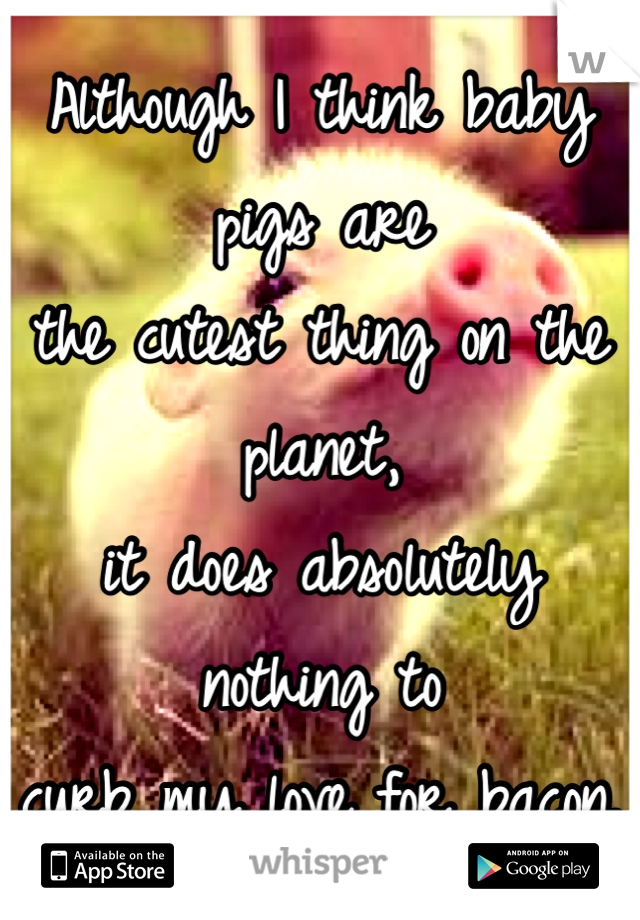 Although I think baby pigs are  the cutest thing on the planet,  it does absolutely nothing to  curb my love for bacon.