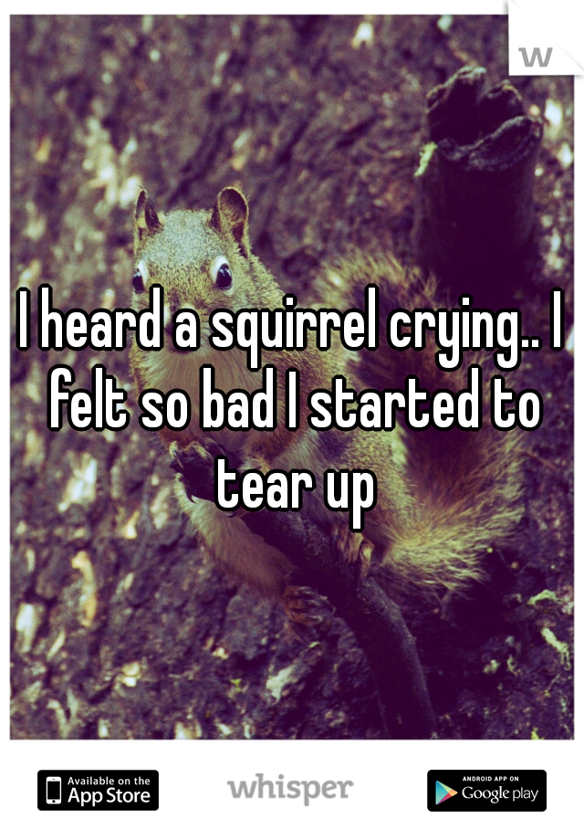 I heard a squirrel crying.. I felt so bad I started to tear up