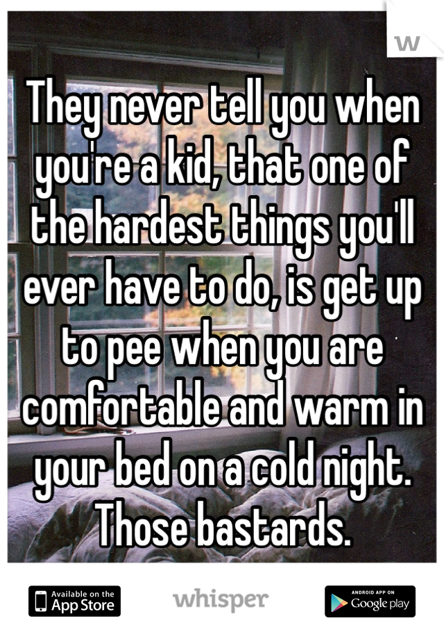 They never tell you when you're a kid, that one of the hardest things you'll ever have to do, is get up to pee when you are comfortable and warm in your bed on a cold night.  Those bastards.