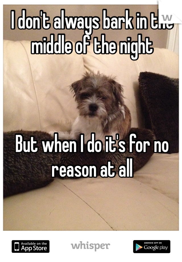 I don't always bark in the middle of the night    But when I do it's for no reason at all