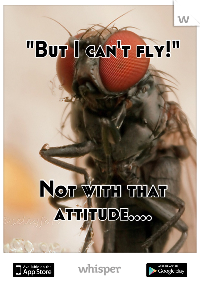"""""""But I can't fly!""""      Not with that attitude...."""