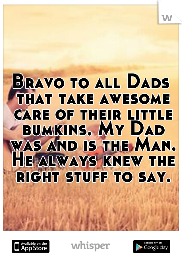 Bravo to all Dads that take awesome care of their little bumkins. My Dad was and is the Man. He always knew the right stuff to say.