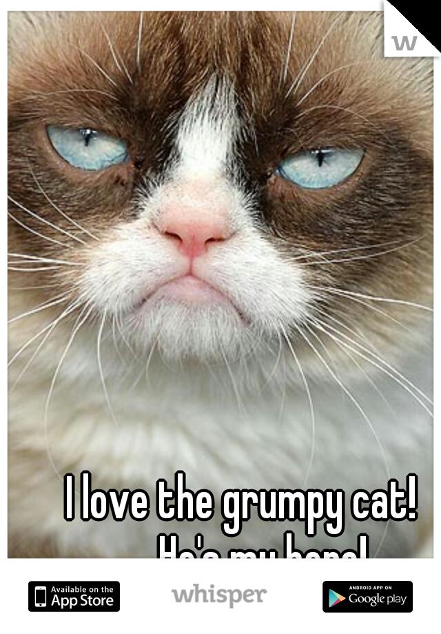 I love the grumpy cat!     He's my hero!