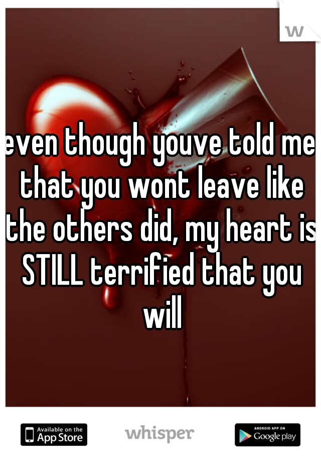 even though youve told me that you wont leave like the others did, my heart is STILL terrified that you will