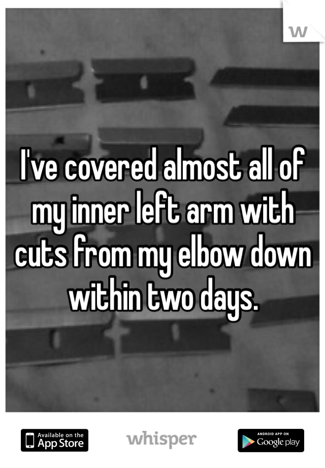 I've covered almost all of my inner left arm with cuts from my elbow down within two days.
