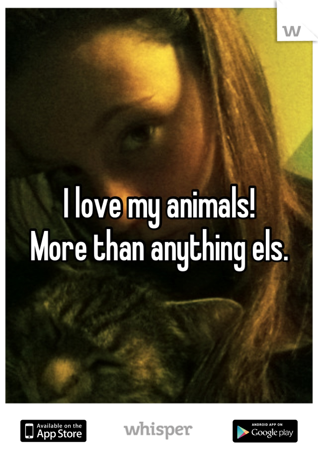I love my animals!  More than anything els.