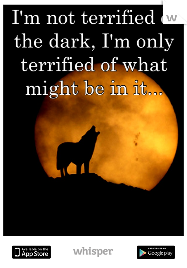 I'm not terrified of the dark, I'm only terrified of what might be in it...