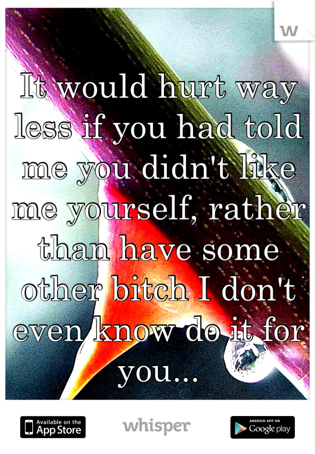 It would hurt way less if you had told me you didn't like me yourself, rather than have some other bitch I don't even know do it for you...