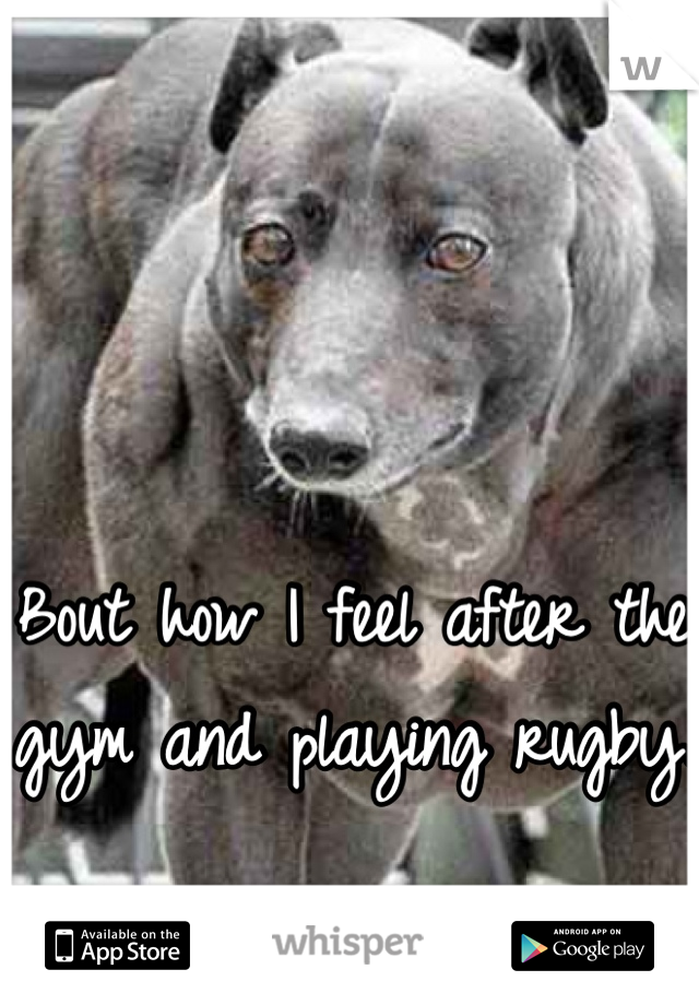 Bout how I feel after the gym and playing rugby.