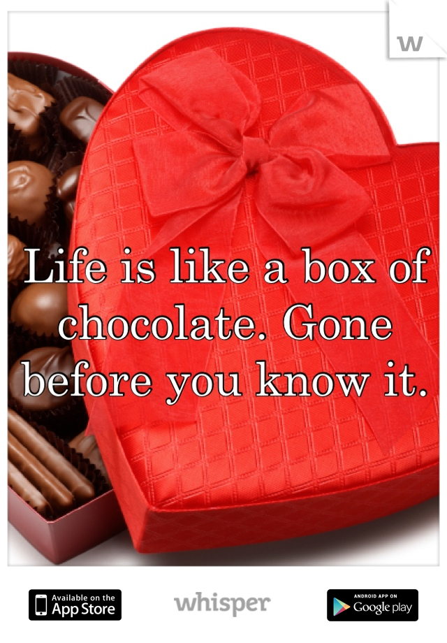 Life is like a box of chocolate. Gone before you know it.