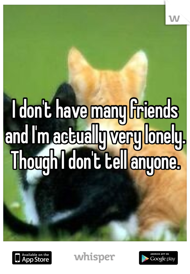 I don't have many friends and I'm actually very lonely. Though I don't tell anyone.