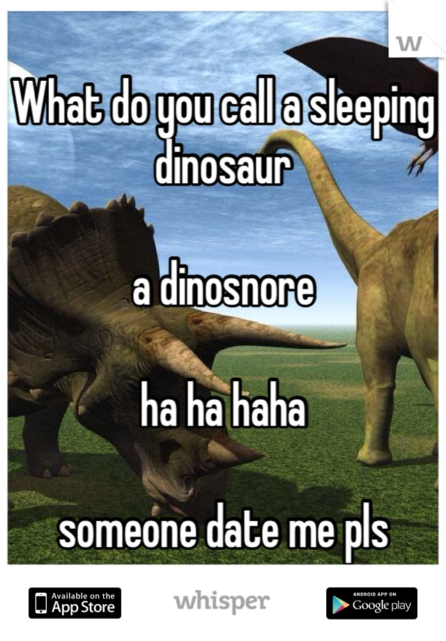 What do you call a sleeping dinosaur      a dinosnore       ha ha haha      someone date me pls