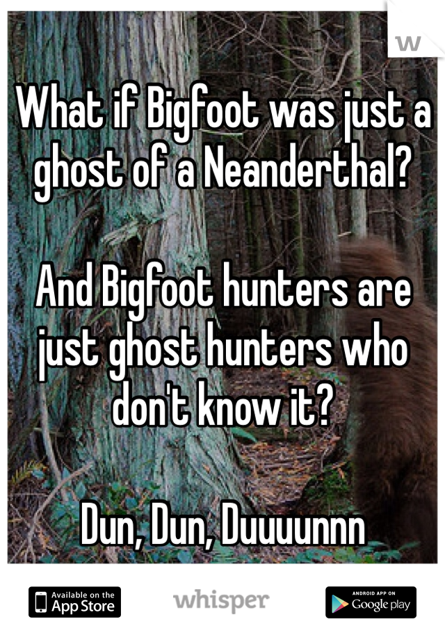 What if Bigfoot was just a ghost of a Neanderthal?   And Bigfoot hunters are just ghost hunters who don't know it?   Dun, Dun, Duuuunnn