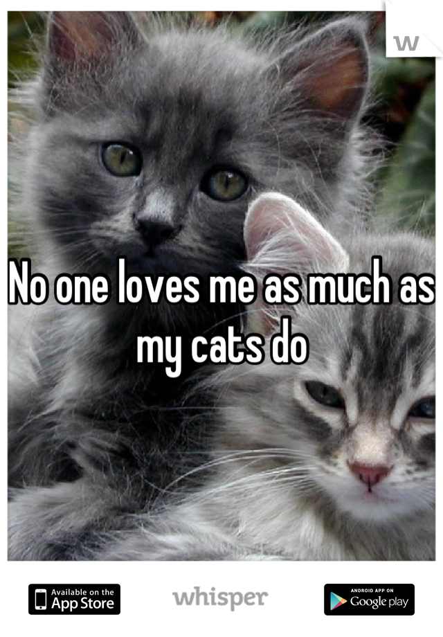 No one loves me as much as my cats do