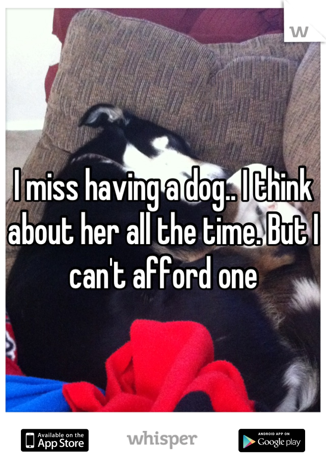 I miss having a dog.. I think about her all the time. But I can't afford one