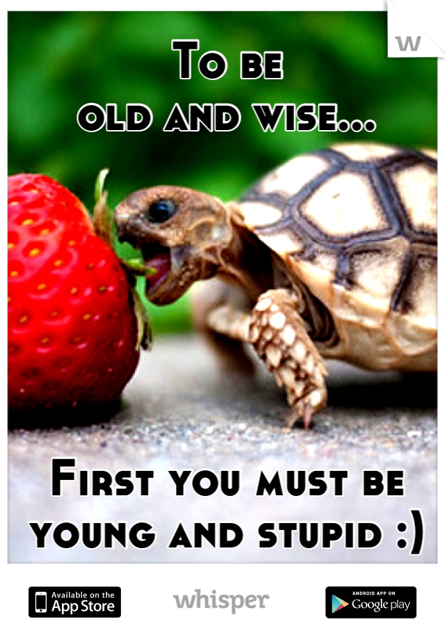 To be  old and wise...       First you must be young and stupid :)