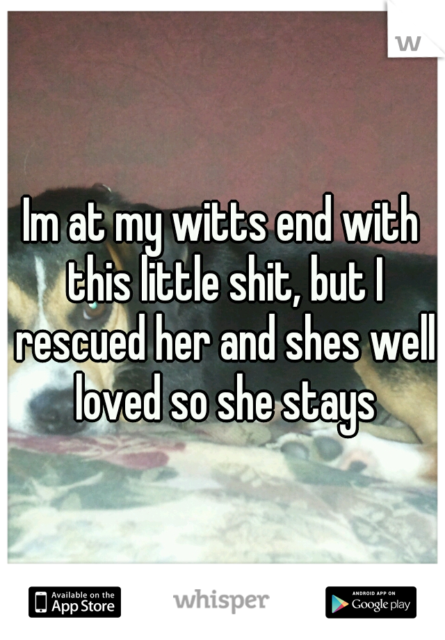 Im at my witts end with this little shit, but I rescued her and shes well loved so she stays