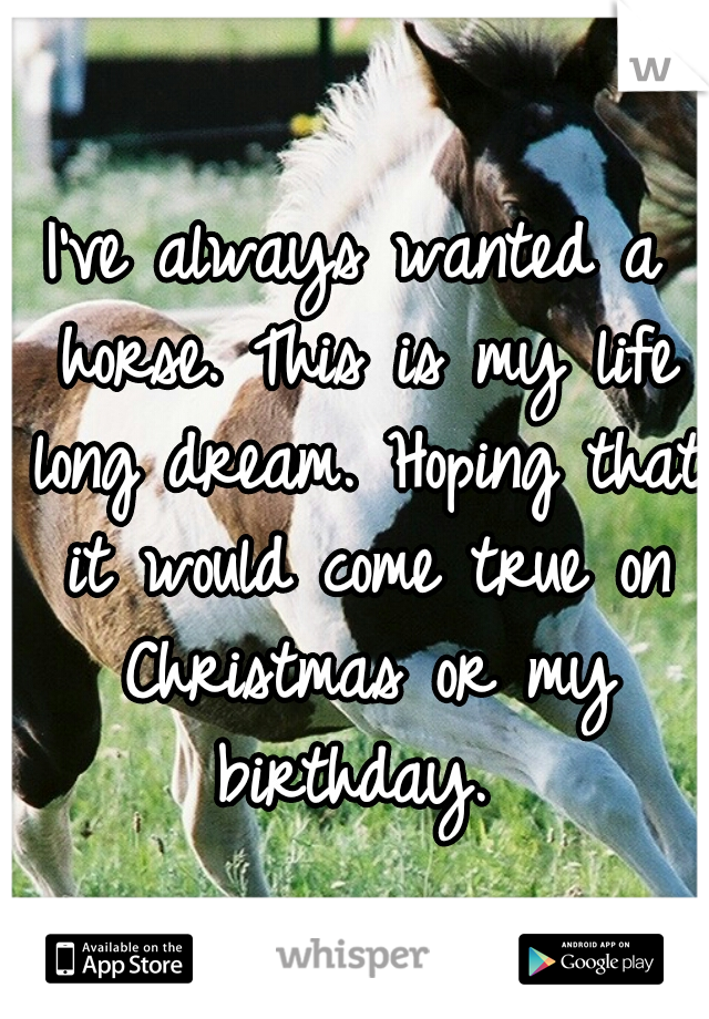 I've always wanted a horse. This is my life long dream. Hoping that it would come true on Christmas or my birthday.