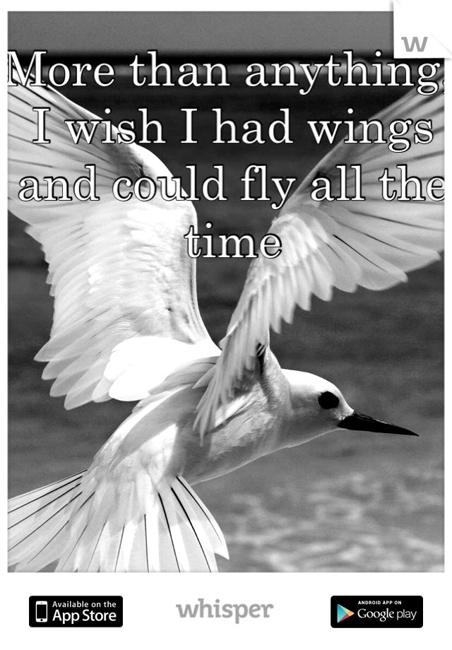 More than anything, I wish I had wings and could fly all the time