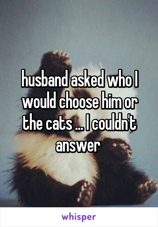 husband asked who I would choose him or the cats ... I couldn't answer