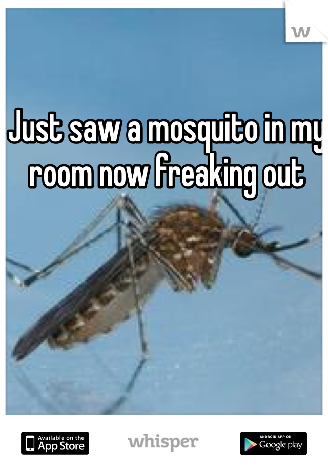 Just saw a mosquito in my room now freaking out