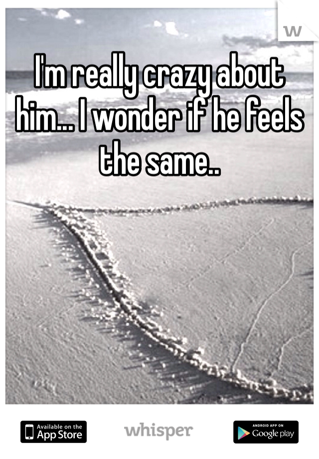 I'm really crazy about him... I wonder if he feels the same..